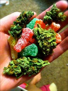 www..legalcannabisshop.com Only candy :D