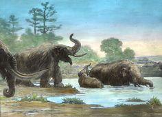 Charles R. Knight - Mastodons