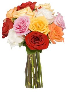 Introducing Benchmark Bouquets Dozen Rainbow Roses No Vase. Great Product and follow us to get more updates!