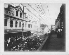 Bubonic Plague 1900