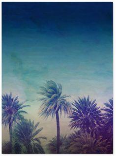 """'Palm Paradise' Canvas Art by Leah Flores, 18"""" x 24"""""""
