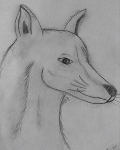 Loup ou chien ou renard ! Ce que vous voudrez !