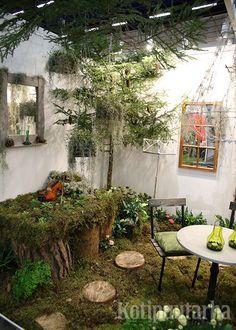 Nordiska Trädgårdar 2016, Tukholma. Yards, Patio, Outdoor Decor, Plants, Home Decor, Decoration Home, Room Decor, Yard, Plant