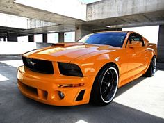 2006 Ford Mustang Mustang Roush Custom Click to find out more - http://newmusclecars.org/2006-ford-mustang-mustang-roush-custom/ COMMENT.