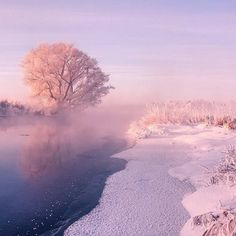 Photographer Captures Magnificent Beauty of Radiant Winter Mornings in Belarus - My Modern Met