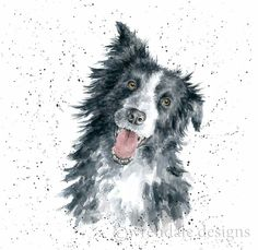 Wrendale Designs by Hannah Dale Border Collie Greeting Card - Set of Three Watercolor Border, Watercolor Animals, Watercolor Paintings, Watercolours, Animal Paintings, Animal Drawings, Art Drawings, Border Collie Art, Wrendale Designs