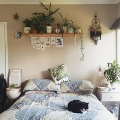 Not wild about a shelf of plants over my head while I sleep; other than that cute bedroom