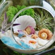 Best gardening ideas mermaid and beach themed fairy garden (3)