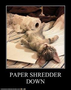 The Paper Shredder quit working