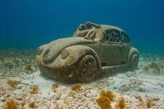 Anthropocene http://musamexico.org/underwater-sculpture/anthropocene/