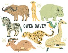 loving this hippo by Owen Davey