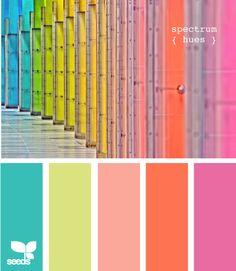 spectrum hues by design-seeds Colour Pallette, Color Palate, Colour Schemes, Color Combos, Color Patterns, Design Seeds, Summer Color Palettes, Summer Colors, Color Concept