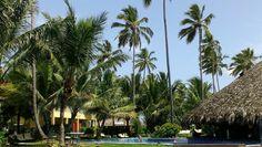 Dreams Resort and Spa Punta Cana, DR.