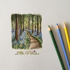 Designing this year's family Easter card #art #drawing #pencil #sketch #illustration #easter #woodland #spring #bluebellwood #fabercastell #westdesignproducts