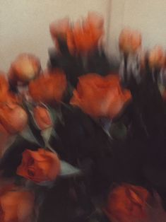 Image uploaded by ⸗ɓᥱヒꧏᥲᥡᥲᥣ. Find images and videos about aesthetic, flowers and rose on We Heart It - the app to get lost in what you love. Orange Aesthetic, Aesthetic Colors, Flower Aesthetic, Aesthetic Vintage, Aesthetic Photo, Aesthetic Pictures, Aesthetic Pastel Wallpaper, Aesthetic Backgrounds, Aesthetic Wallpapers