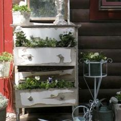 I think this is so cute to plant flowers in the drawers inside the old dresser.