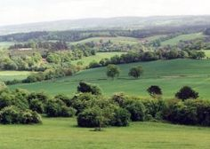 View from the Hog's Back, Near Guildford, Surrey - My photo which shows how much I loved it.