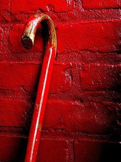 Cane and Red Brick