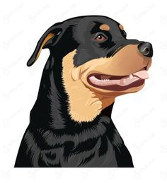 FULL-COLOR-VINYL-STICKER-DECAL-Rottweiler-dog