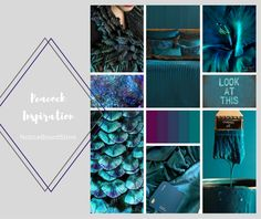 Peacock Blue Colour Inspiration – The Notice Board Store Peacock Bird, Mermaid Coloring, Colorful Feathers, Colour Inspiration, Green And Purple, Branding, Colours, Blog, Decorating Ideas