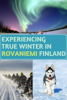 Best Rovaniemi and Lapland holidays in Finland - dog sledding, reindeer sledding, snowmobile safaris, Santa's village and much more! Backpacking Europe, Europe Travel Guide, Travel Guides, Europe Destinations, Lapland Holidays, Finland Travel, Adventure Holiday, France, European Travel