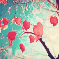 Our hearts are autumn leaves waiting to fall (Pink - Red fall leafs and brilliant retro blue sky) Art Print | Sumally (サマリー)
