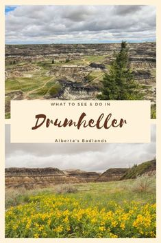 Visit Canada, Canada Eh, Canadian Travel, Canadian Rockies, Newfoundland Tourism, Drumheller Alberta, Stuff To Do, Things To Do, Alberta Travel