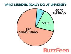 The 42 Funniest Things Overheard At British Universities . stupidity in reality