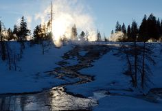 Morning sun breaks over a creek in Yellowstone National Park. Photograph by Andy Coleman
