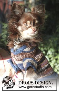 "Little Watcher - Knitted DROPS dog's sweater with hood in ""Fabel"".  - Free pattern by DROPS Design"