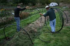 #4 putting on the hoops by Erin Benzakein / Floret Flower Farm, via Flickr