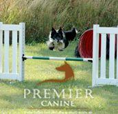 Dog Agility http://www.premiercanine.net/