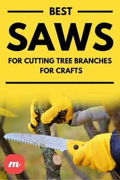 When I bought my first home, I realized I needed to start looking at tools and products to take care of the outdoor space in my home. Eventually, I found the best saw for my purposes, which was mainly cutting down tree branches. I also managed to get into