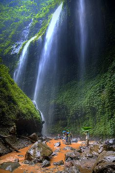 Madakaripura waterfall ~ East Java, Indonesia