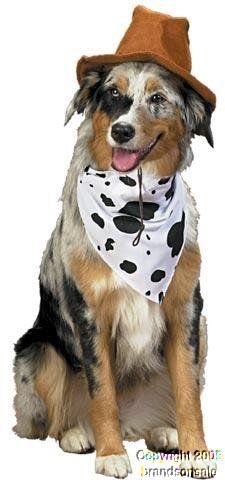 Amazon.com: Pet Western Cowboy Dog Costume For Large Dogs: Clothing
