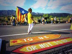 11 Septembre 2013 Via Catalana