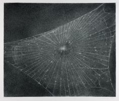 Vija Celmins - Web # 1, charcoal on paper