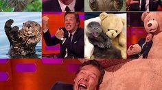 Benedict Cumberbatch posing like otters. - Imgur