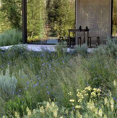 My kind of aesthetic - Ketchum Residence and garden - Lutsko Associates