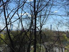 The view of the #VerrazanoBridge from Serpentine Commons #statenisland #stapleton #bridge