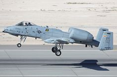I used to love watching these fly low over the camp I used to attend.