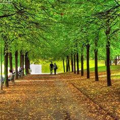 Paris XII parc de bercy.jpg