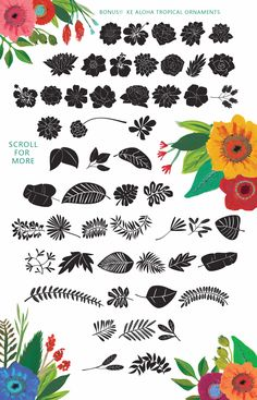 Ke Aloha Script + Bonus! by Emily Spadoni on @creativemarket