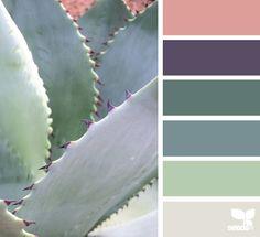 succulent hues. Paint scheme