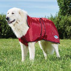 WeatherBeeta Windbreaker Fleece Lined With Belly Wrap Dog Coat