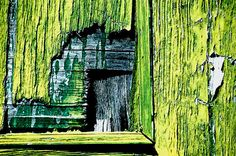lime green weathered wood