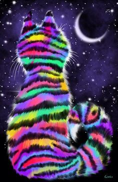 Rainbow Tiger Cat by Nick Gustafson