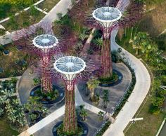 Solar supertrees to officially open at Singapore's Gardens by the Bay the trees seem a little unreal, but they are real. Check out the rest of the gardens some pretty cool stuff there.