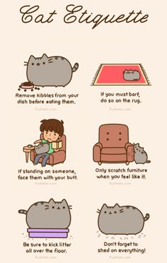 Cat Etiquette #cats #animals #pets #feline http://socialmediabar.com/inspired