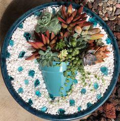 By Bobbi Willmer for my succulent garden ☺️💚 It's a succiepotinapot #succulentsandpups